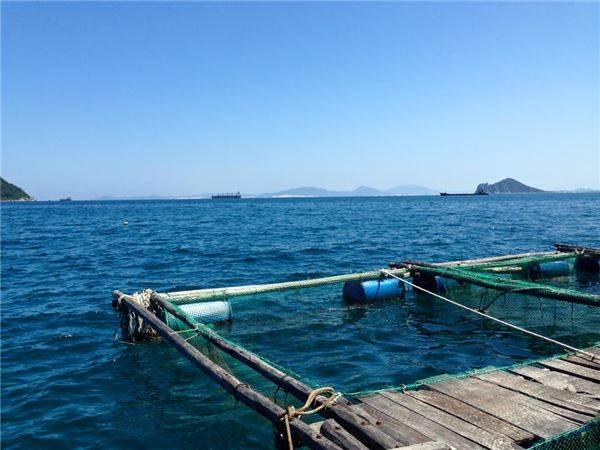 Tham khảo ngay kinh nghiệm đi phượt Phú Yên